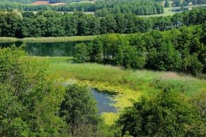 Сувальський Національний парк