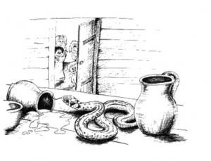 Про зміїну вдячність
