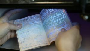 Анулювання, відміна або скорочення терміну дії Шенгенської візи